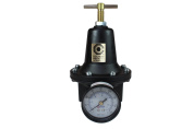 Coilhose Pneumatics 8802GL Heavy Duty Series Regulator, 0.6cm Pipe Size with Gauge and Low Pressure Spring