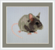 Squeek Counted Cross Stitch Kit By Orcraphics