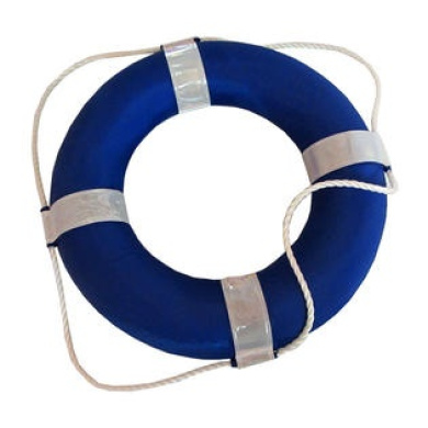 Blue and White Foam Ring Buoy for Swimming Pools 48cm with Perimeter Rope