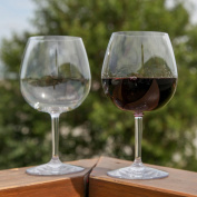 Unbreakable Indoor / Outdoor Pinot Noir / Red Wine Glasses, Shatterproof and Reusable. Set of 2. By Lily's Home®