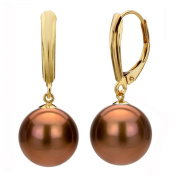 DaVonna 14k Yellow Gold Brown FW Pearl Leverback Earrings