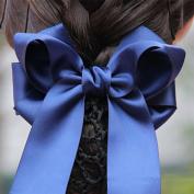 Xuanli® 4/5/6 Pcs Hair Womens Lady Lace Bow Bowknot Mesh Elastic Snood Net Bun Cover Net Professional Headdress Flower Hair Clips