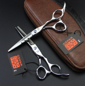 Japan Profissional Hairdressing Scissors Hair Cutting Scissors Set
