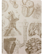 Cognitive Surplus Hardcover Vintage Human Anatomy Sketchbook