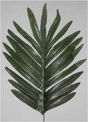 Package of 24 Silk Palm Leaves