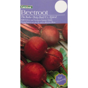 Carnival Seeds The Butler Red Beetroot Vegetable
