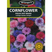 McGregor's Cornflower Polka Dot Mixed Flower Seeds