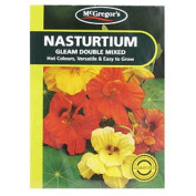 McGregor's Nasturtium Gleam Double Flower Seeds