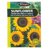 McGregor's Sunflower Big Smile Flower Seeds
