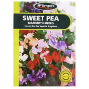 McGregor's Sweet Pea Mammoth Flower Seeds