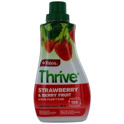 Yates Thrive Liquid Concentrate Strawberry 500ml