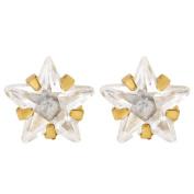 9ct Gold CZ Star 6mm Earrings