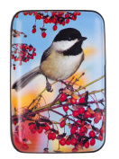 Bird Armoured Credit Card Wallet and Cash Holder