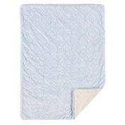 Living Textiles Skylar Embroidered Velour Blanket, Blue