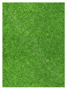 A4 Grass lawn Printed Sugar Icing Sheet (approx 19cm x 25cm ) for cake decorating - Cut edible shapes from the sugar icing sheet with craft knife or scissors to stick on your cake!