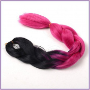 New Bee Hair.3/Lot Kanekalon Ombre Rose Red Colour Braiding Hair High Temperature Fibre Expression Braiding Hair 100g/Pcs Synthetic Braiding Hair Extension