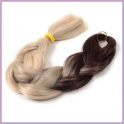 New Bee Hair.3Pcs/Lot Kanekalon Ombre Brown TO Gloden Braiding Hair High Temperature Fibre Expression Braiding Hair 100g/Pcs Synthetic Braiding Hair Extension