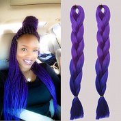 New Bee Hair.3Pcs/Lot Ombre Kanekalon Jumbo Braiding Hair 60cm ' Synthetic Purple To Blue Ombre High Temperature Fibre Jumbo Braid Hair-100G