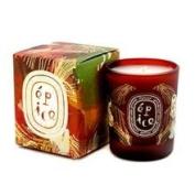 Diptyque Scented Candle Feu De Bois (Wood Fire) 190G190ml