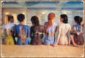 Pink Floyd - Back Art - Tin Sign