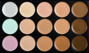 Tonsee Pro Cosmetic Makeup Brush Face Powder Blusher Toothbrush Curve Brush Foundation + 15 Colours Concealer