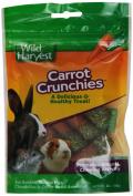 UNITED PET GROUP Gerbil & Hamster Treats, Carrot Crunchies, 60ml