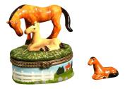 Horse Pony Colt Mare Pasture Lovers Trinket Box phb