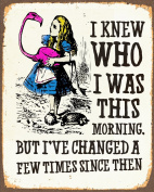 Alice In Wonderland I've Changed METAL Wall Sign 15cm x 20cm Plaque Vintage Retro poster art picture print