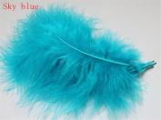 Hgshow 100Pcs Turkey plumage, Many Colour Options,Each about 13cm - 15cm in length Lack blue