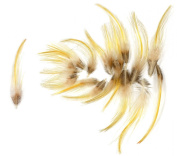 Golden Pheasant Crown Feathers (20 Pieces), Yellow Gold