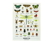 Gift Republic GR270095 Insects Tea Towel, Multicolor