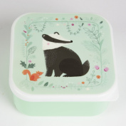 A Great Lunchbox Sandwich Box ~ Badger ~ Sandwich Lunch Box for Children