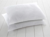 •ROHILinen• Living Bounce Back Pillows - 2 Pack with Free Complimentary Fuchsia Pillow Case