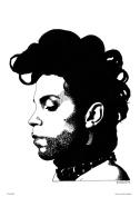 Prince by Becky Mann Poster Art Print