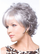B-G Charming Fashion Hairstyles Synthetic Short Curly Hair Wig for Women Grey Wigs with 1 Free Wig Cap WIG022