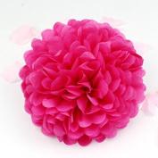 Sorive® 10pcs Tissue Paper Pom-poms Flower Ball Wedding Party Pom Poms Craft Pom Poms Decoration Outdoor Decoration SORIVE0014