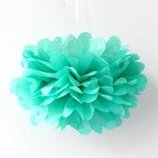 Sorive® 10pcs Tissue Paper Pom-poms Flower Ball Wedding Party Pom Poms Craft Pom Poms Decoration Outdoor Decoration SORIVE0015