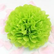 Sorive® 10pcs Tissue Paper Pom-poms Flower Ball Wedding Party Pom Poms Craft Pom Poms Decoration Outdoor Decoration SORIVE0016