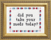 "Subversive Cross Stitch ""Did You Take Your Meds Today"" Deluxe Kit"