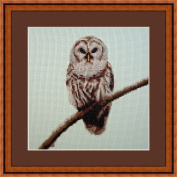 Owl on Branch Counted Cross Stitch Kit By Orcraphics