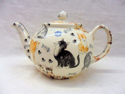 2 cup teapot in cute cats and kittens design by Heron Cross Pottery.