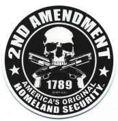 Motorcycle Helmet Sticker - 2nd Amendment America's Original Homeland Security