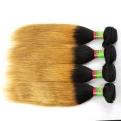 xuchang Eecamail Hair 7A Ombre Brazilian Straight Virgin Human Hair Weave 2 Tone Colour 1B/33# Ombre Straight Weave 5 Bundles Remy Hair Extensions 100G Bundle -25cm - 70cm