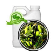 Olive Squalane Oil - 1890ml - 100% Pure and Natural