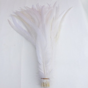 Shekyeon 16-18inch 40-45cm Rooster Coque Tail Feather for costume decoration pack of 20