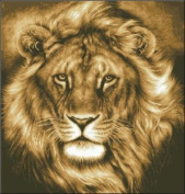 Lion, the king ,counted cross stitch, cotton thread , 14ct 209x219 stitch 50x50cm counted cross stitch kit