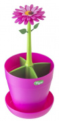Vigar Flower Power - Cutlery Holder, Pink and Green