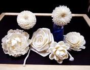 6 Balsa Wood Sola Diffuser Flowers with cotton rope, Zinnia, Chrysanthemum, Lotus, Jasmine, Peony Rose and Rose 5-8 cm. Diameter.