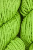 HiKoo - Simpliworsted Knitting Yarn - Grass Slipper