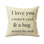 SMTSMT Sofa Bed Home Decor Pillow Case Cushion Cover